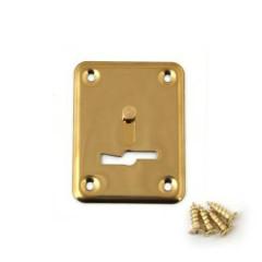 Накладка декоративная Avers DP-01-S.M-G-shutter